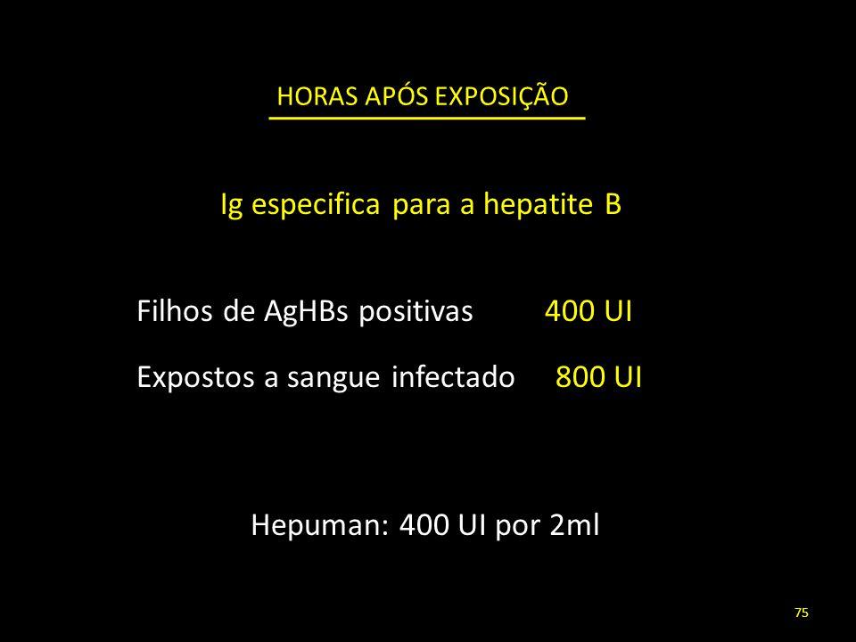 HORAS APÓS EXPOSIÇÃO Filhos de AgHBs positivas 400 UI Expostos a sangue infectado 800 UI Ig especifica para a hepatite B Hepuman: 400 UI por 2ml 75
