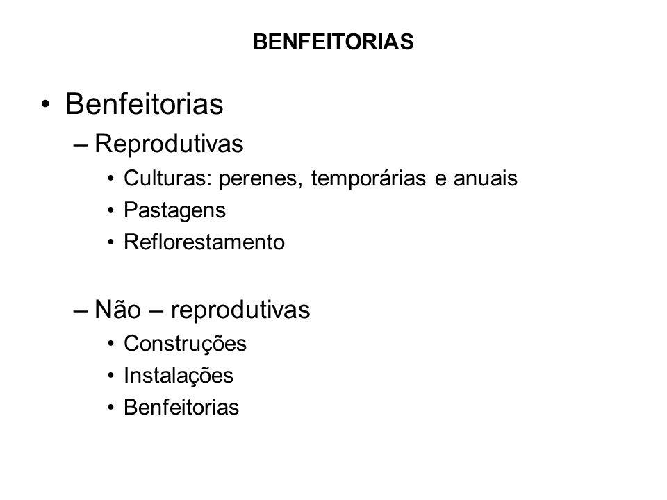 •Benfeitorias –Reprodutivas •Culturas: perenes, temporárias e anuais •Pastagens •Reflorestamento –Não – reprodutivas •Construções •Instalações •Benfei