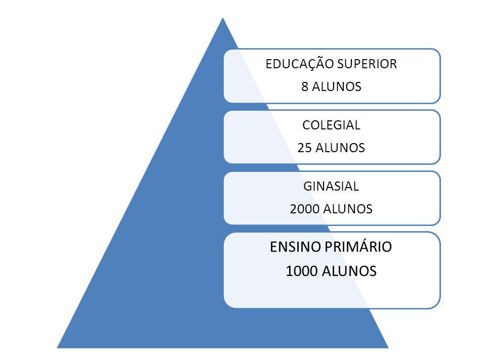 EDUCAÇÃO SUPERIOR 8 ALUNOS COLEGIAL 25 ALUNOS GINASIAL 2000 ALUNOS ENSINO PRIMÁRIO 1000 ALUNOS