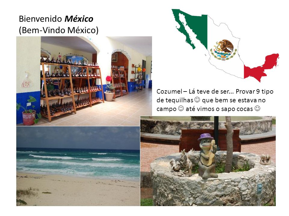 Bienvenido México (Bem-Vindo México) Cozumel – Lá teve de ser... Provar 9 tipo de tequilhas  que bem se estava no campo  até vimos o sapo cocas 