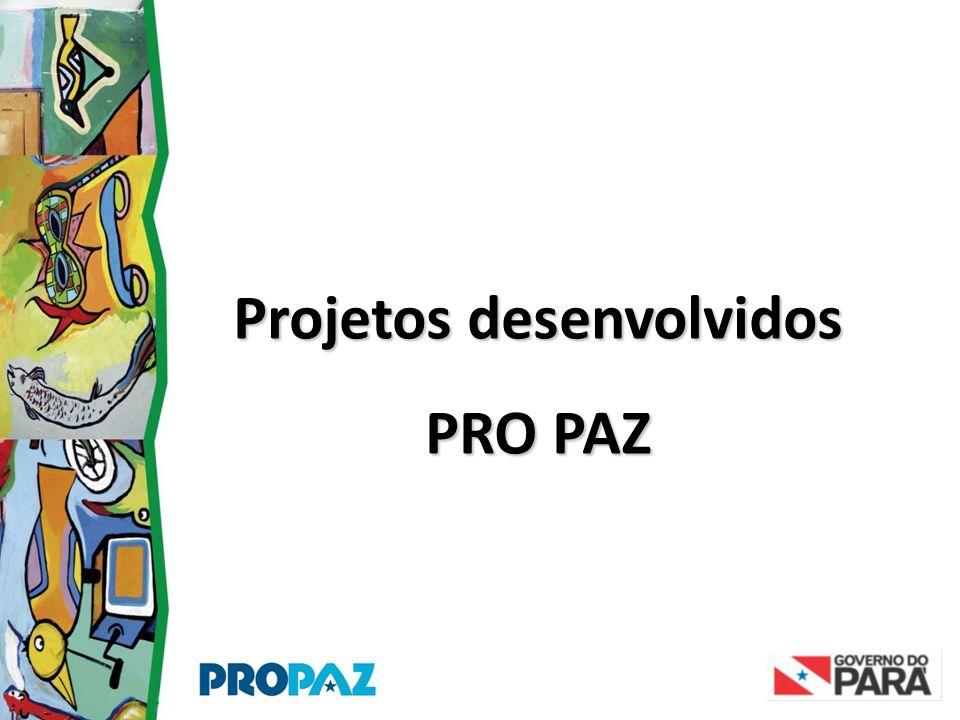 Projetos desenvolvidos PRO PAZ