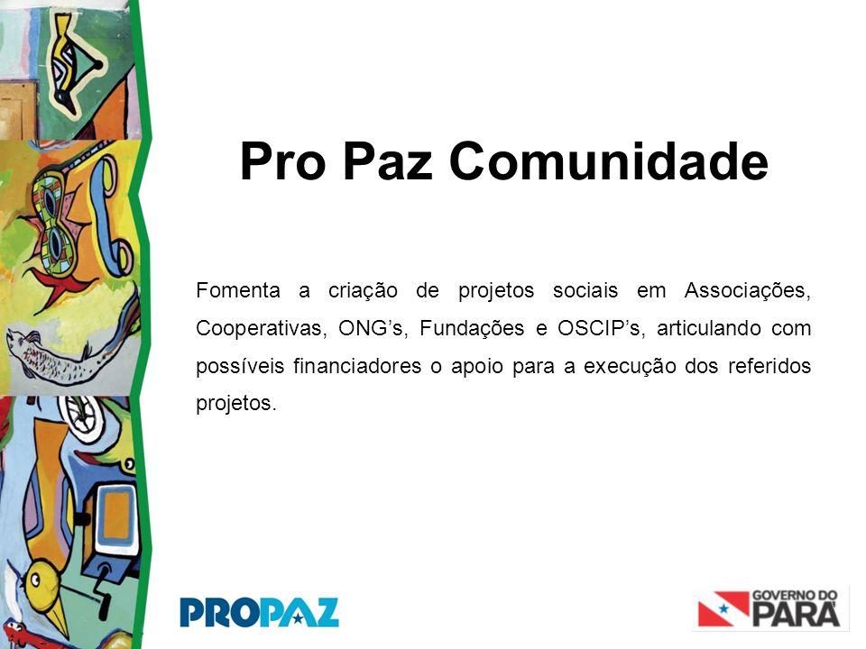 Pro Paz Comunidade Fomenta a criação de projetos sociais em Associações, Cooperativas, ONG's, Fundações e OSCIP's, articulando com possíveis financiad