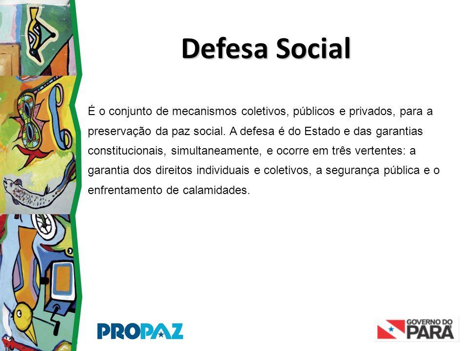 É o conjunto de mecanismos coletivos, públicos e privados, para a preservação da paz social. A defesa é do Estado e das garantias constitucionais, sim