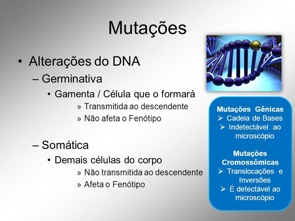 Mutações •Alterações do DNA –Germinativa •Gamenta / Célula que o formará »Transmitida ao descendente »Não afeta o Fenótipo –Somática •Demais células do corpo »Não transmitida ao descendente »Afeta o Fenótipo Mutações Gênicas  Cadeia de Bases  Indetectável ao microscópio Mutações Cromossômicas  Translocações e Inversões  É detectável ao microscópio