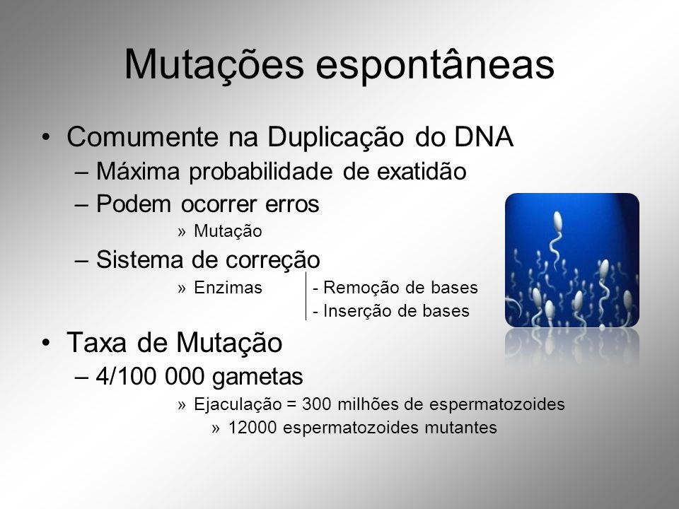 Mutações espontâneas •Comumente na Duplicação do DNA –Máxima probabilidade de exatidão –Podem ocorrer erros »Mutação –Sistema de correção »Enzimas- Remoção de bases - Inserção de bases •Taxa de Mutação –4/100 000 gametas »Ejaculação = 300 milhões de espermatozoides »12000 espermatozoides mutantes