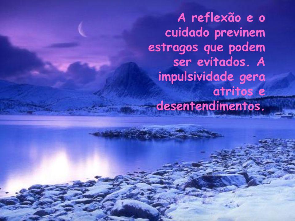 Palavras exigem reflexão, cautela, serenidade... Jamais a impulsividade.