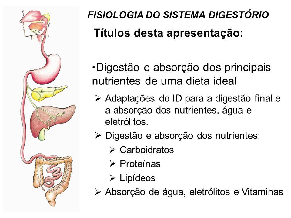 Mecanismos absortivos do epitélio do intestino delgado Água e NaCl Movimento de águaVisão integrada