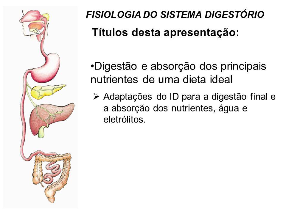 Mecanismos absortivos do epitélio do intestino delgado