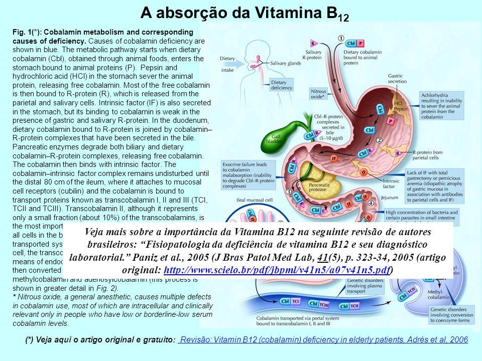 A absorção da Vitamina B 12 Fig. 1(*): Cobalamin metabolism and corresponding causes of deficiency. Causes of cobalamin deficiency are shown in blue.
