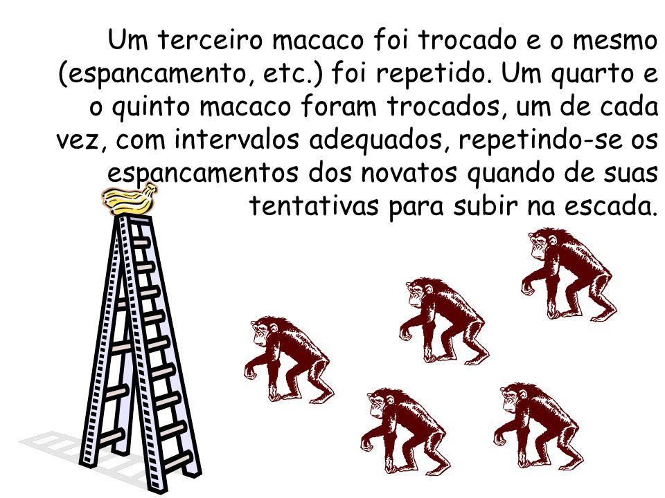 Um segundo macaco foi substituído e ocorreu com ele o mesmo que com o primeiro. O primeiro macaco que havia sido substituído participou, juntamente co