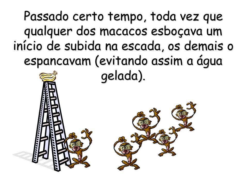 Passado certo tempo, toda vez que qualquer dos macacos esboçava um início de subida na escada, os demais o espancavam (evitando assim a água gelada).