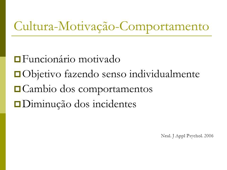 Cultura-Motivação-Comportamento  Funcionário motivado  Objetivo fazendo senso individualmente  Cambio dos comportamentos  Diminução dos incidentes Neal.