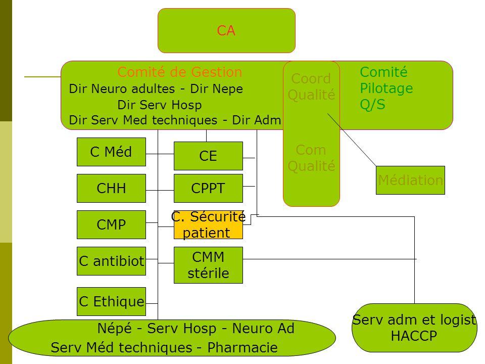 CA Comité de GestionComité Dir Neuro adultes - Dir Nepe Pilotage Dir Serv Hosp Q/S Dir Serv Med techniques - Dir Adm Coord Qualité Com Qualité CHH C Méd CMP C antibiot C Ethique CE CPPT C.