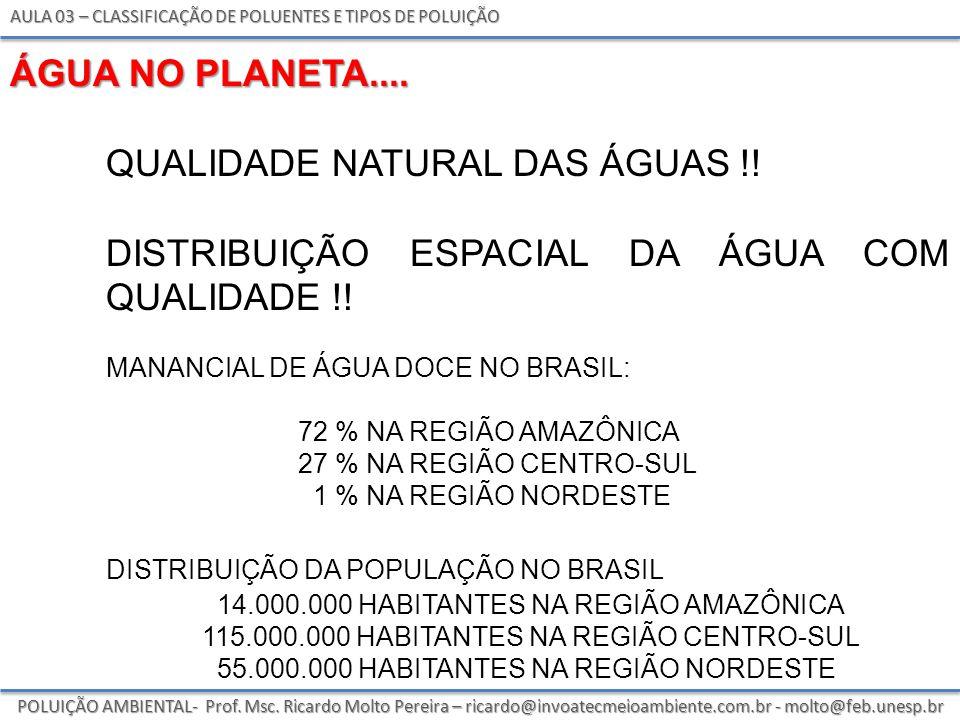 AULA 03 – CLASSIFICAÇÃO DE POLUENTES E TIPOS DE POLUIÇÃO POLUIÇÃO AMBIENTAL- Prof.