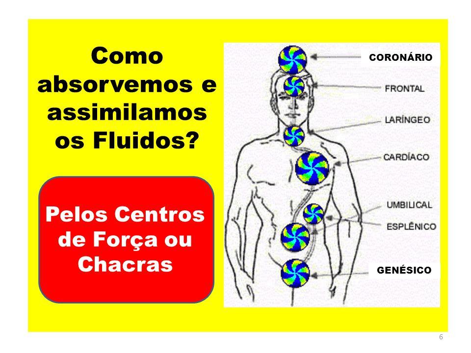 6 Como absorvemos e assimilamos os Fluidos? GENÉSICO Pelos Centros de Força ou Chacras CORONÁRIO