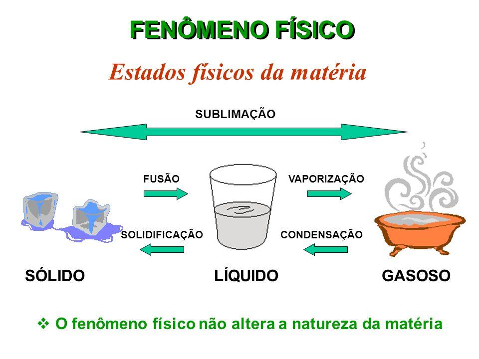 FENÔMENO QUÍMICO Combustão do álcool etílico H 3 C- CH 2 - OH + 3O 2  2CO 2 + 3H 2 O Reagentes Produtos  O fenômeno químico transforma a natureza ín