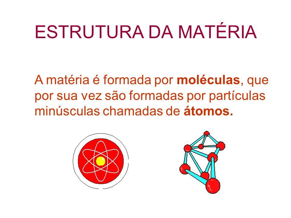 FENÔMENO QUÍMICO Combustão do álcool etílico H 3 C- CH 2 - OH + 3O 2  2CO 2 + 3H 2 O Reagentes Produtos  O fenômeno químico transforma a natureza íntima da matéria.