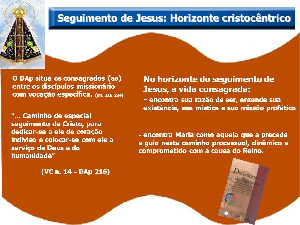 O DAp situa os consagrados (as) entre os discípulos missionário com vocação específica. (nn. 216-224) No horizonte do seguimento de Jesus, a vida cons