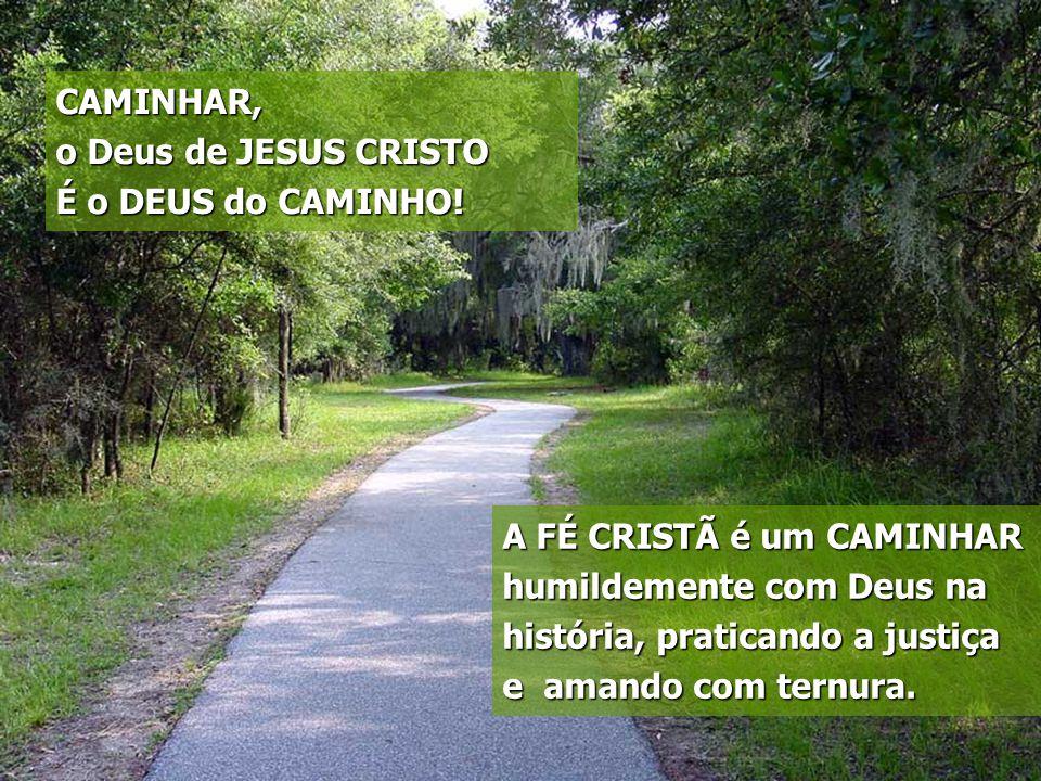 CAMINHAR, o Deus de JESUS CRISTO É o DEUS do CAMINHO! A FÉ CRISTÃ é um CAMINHAR humildemente com Deus na história, praticando a justiça e amando com t
