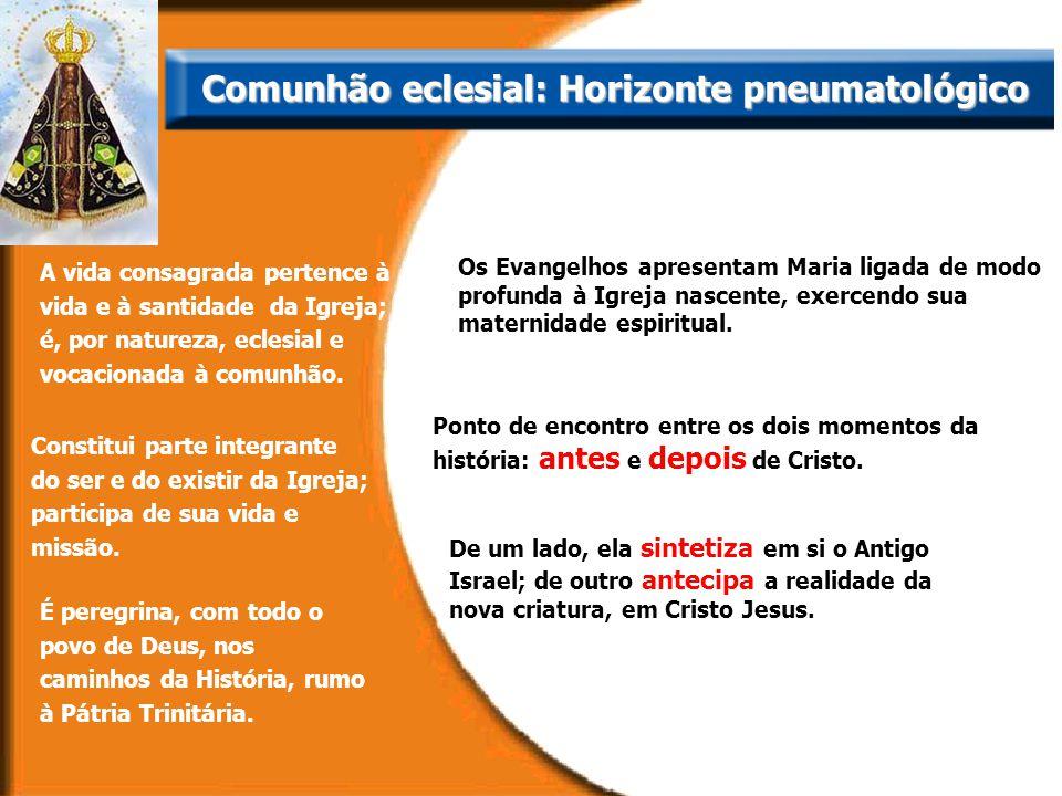 A vida consagrada pertence à vida e à santidade da Igreja; é, por natureza, eclesial e vocacionada à comunhão. Os Evangelhos apresentam Maria ligada d