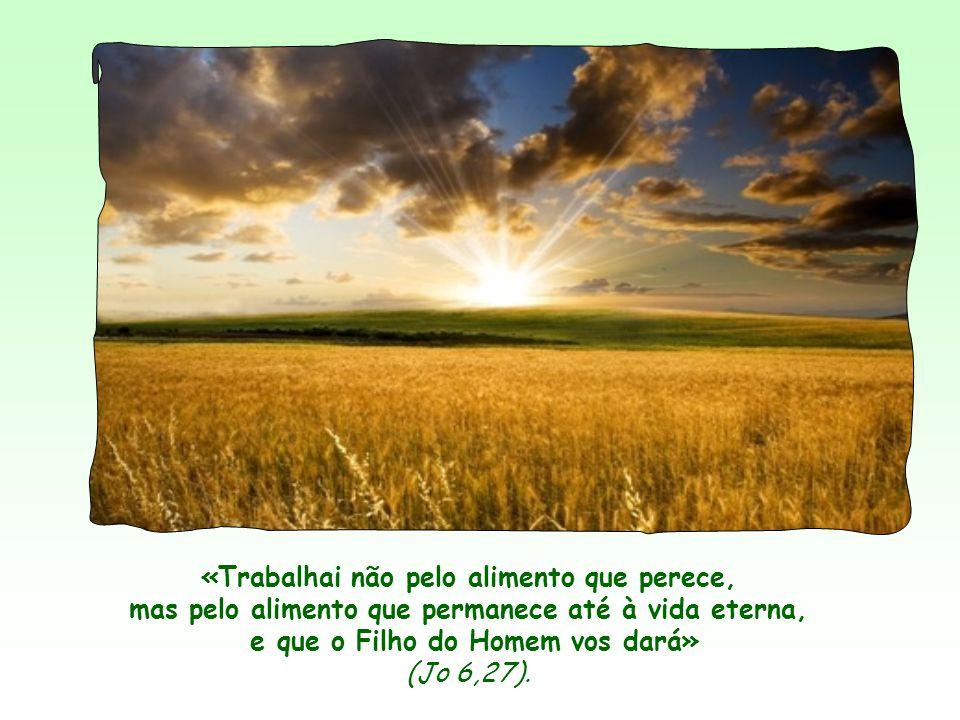 «Trabalhai não pelo alimento que perece, mas pelo alimento que permanece até à vida eterna, e que o Filho do Homem vos dará» (Jo 6,27).
