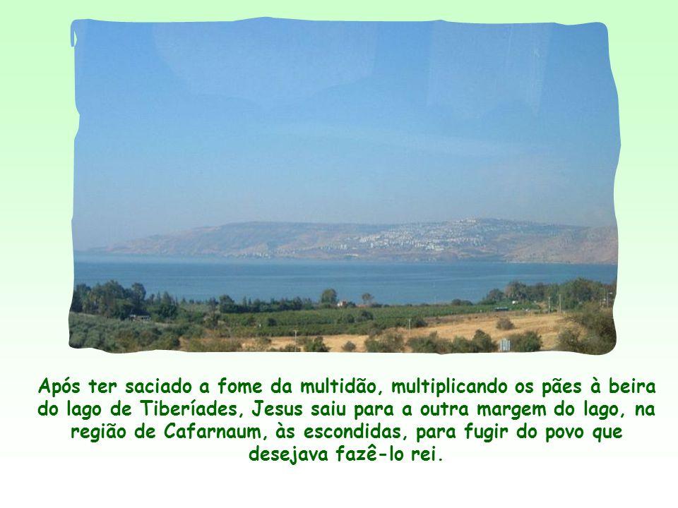 Após ter saciado a fome da multidão, multiplicando os pães à beira do lago de Tiberíades, Jesus saiu para a outra margem do lago, na região de Cafarnaum, às escondidas, para fugir do povo que desejava fazê-lo rei.