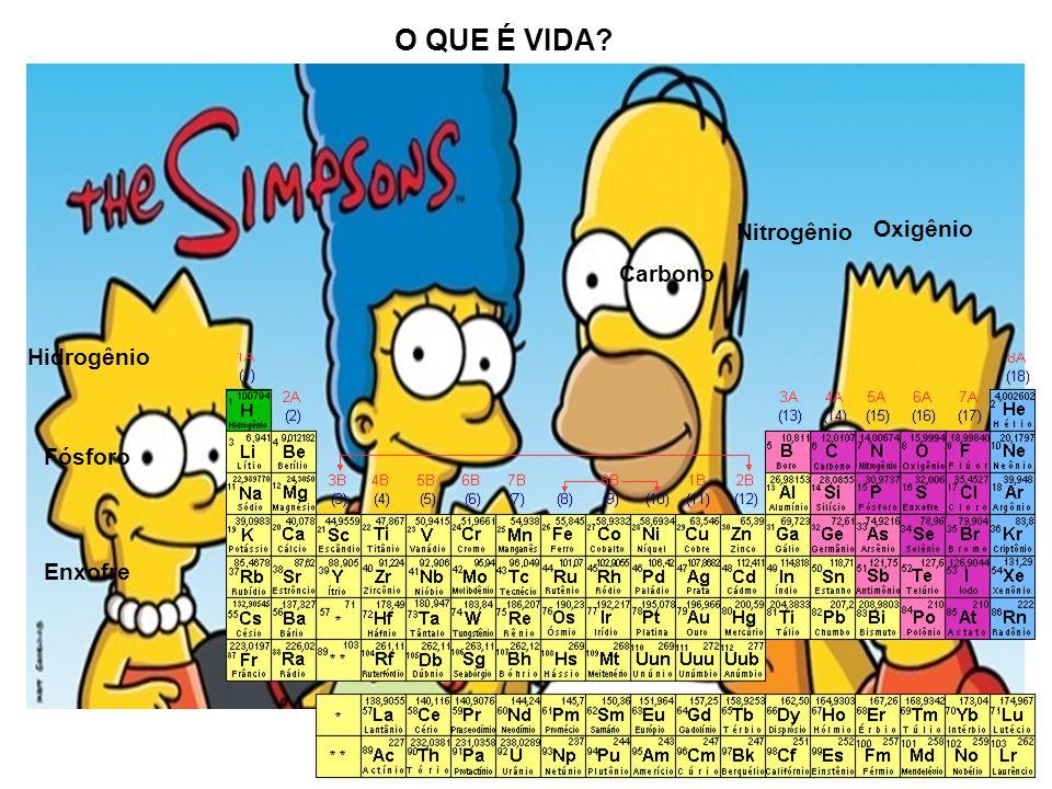 A união de centenas, até milhões, de átomos por meio de ligações químicas, formam moléculas constituintes dos seres vivos, chamadas de substâncias orgânicas.