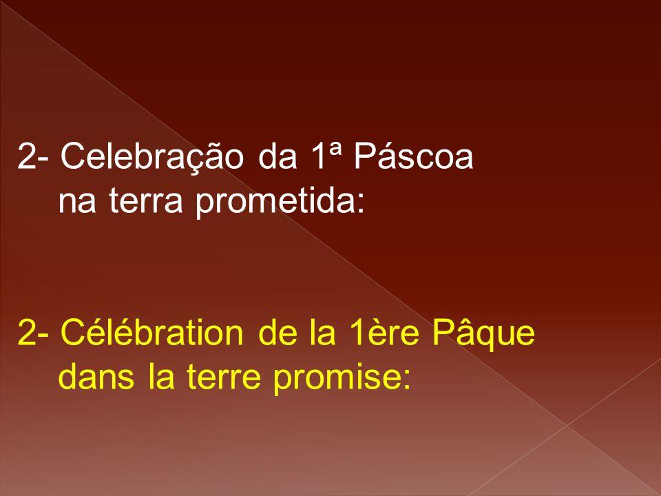2- Celebração da 1ª Páscoa na terra prometida: 2- Célébration de la 1ère Pâque dans la terre promise: