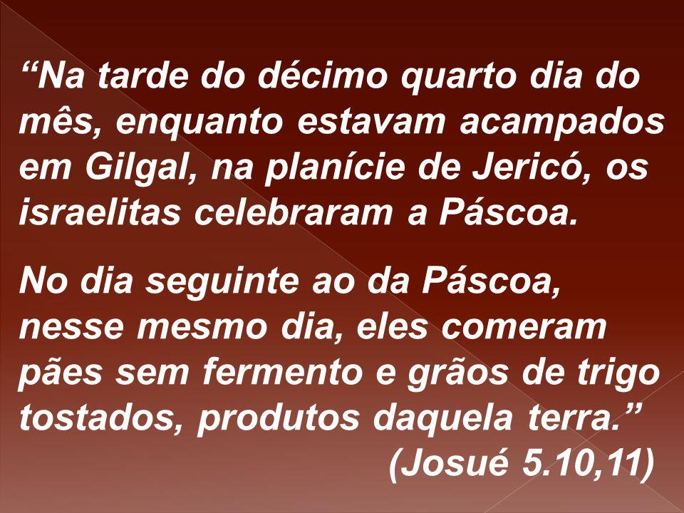 """""""Na tarde do décimo quarto dia do mês, enquanto estavam acampados em Gilgal, na planície de Jericó, os israelitas celebraram a Páscoa. No dia seguinte"""