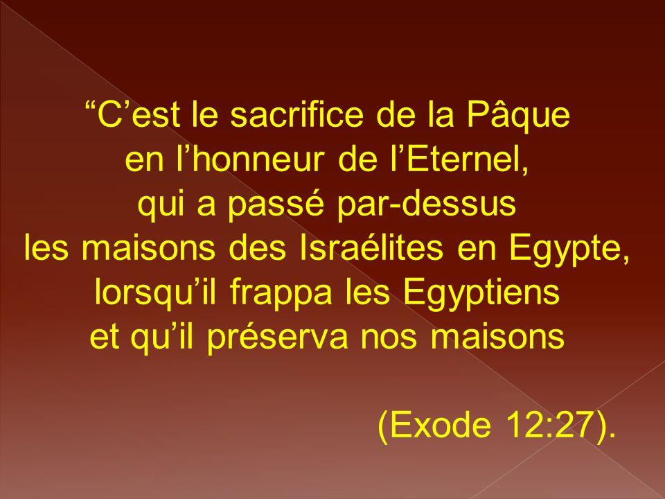 """""""C'est le sacrifice de la Pâque en l'honneur de l'Eternel, qui a passé par-dessus les maisons des Israélites en Egypte, lorsqu'il frappa les Egyptiens"""