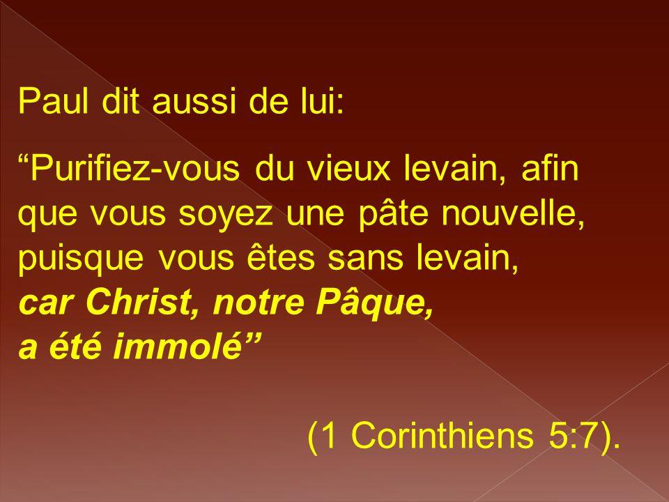 """Paul dit aussi de lui: """"Purifiez-vous du vieux levain, afin que vous soyez une pâte nouvelle, puisque vous êtes sans levain, car Christ, notre Pâque,"""