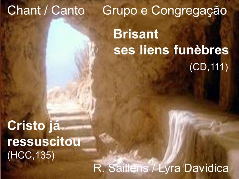 Chant / Canto Grupo e Congregação Brisant ses liens funèbres (CD,111) Cristo já ressuscitou (HCC,135) R. Saillens / Lyra Davidica