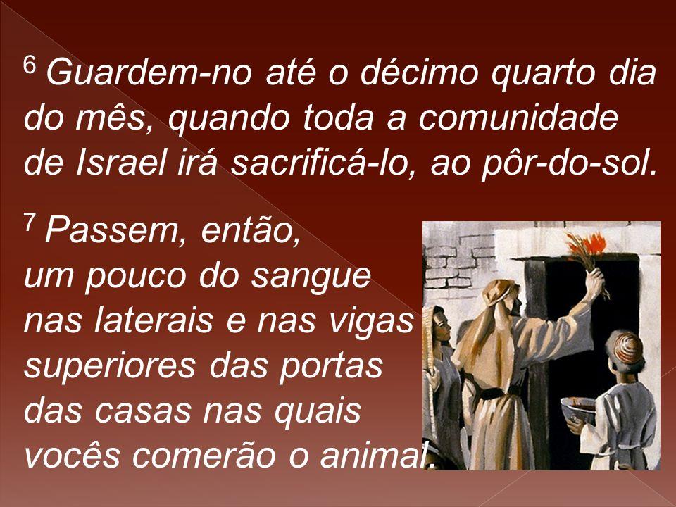 6 Guardem-no até o décimo quarto dia do mês, quando toda a comunidade de Israel irá sacrificá-lo, ao pôr-do-sol. 7 Passem, então, um pouco do sangue n