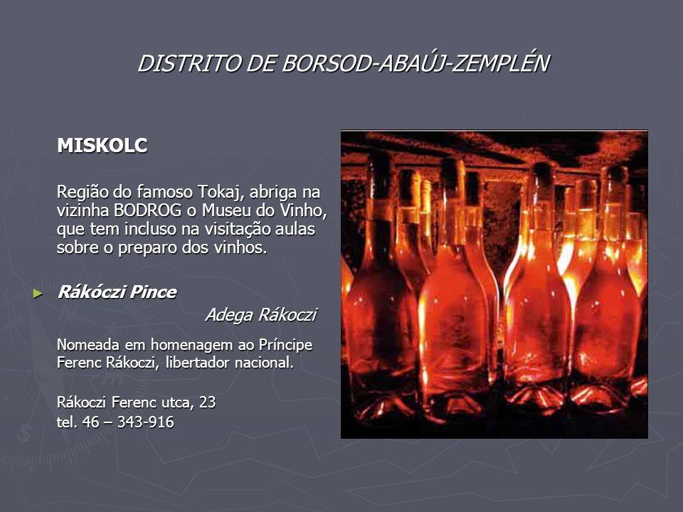 DISTRITO DE BORSOD-ABAÚJ-ZEMPLÉN MISKOLC Região do famoso Tokaj, abriga na vizinha BODROG o Museu do Vinho, que tem incluso na visitação aulas sobre o preparo dos vinhos.