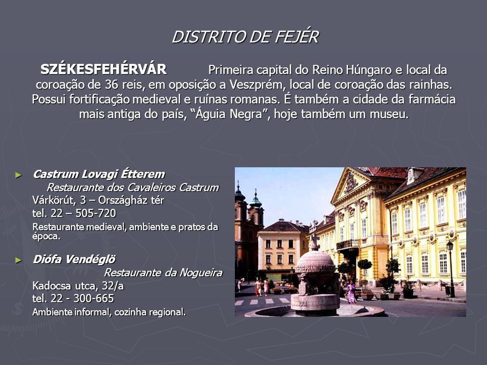 DISTRITO DE FEJÉR SZÉKESFEHÉRVÁR Primeira capital do Reino Húngaro e local da coroação de 36 reis, em oposição a Veszprém, local de coroação das rainhas.