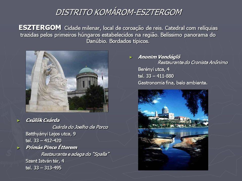 DISTRITO KOMÁROM-ESZTERGOM ESZTERGOM Cidade milenar, local de coroação de reis. Catedral com relíquias trazidas pelos primeiros húngaros estabelecidos