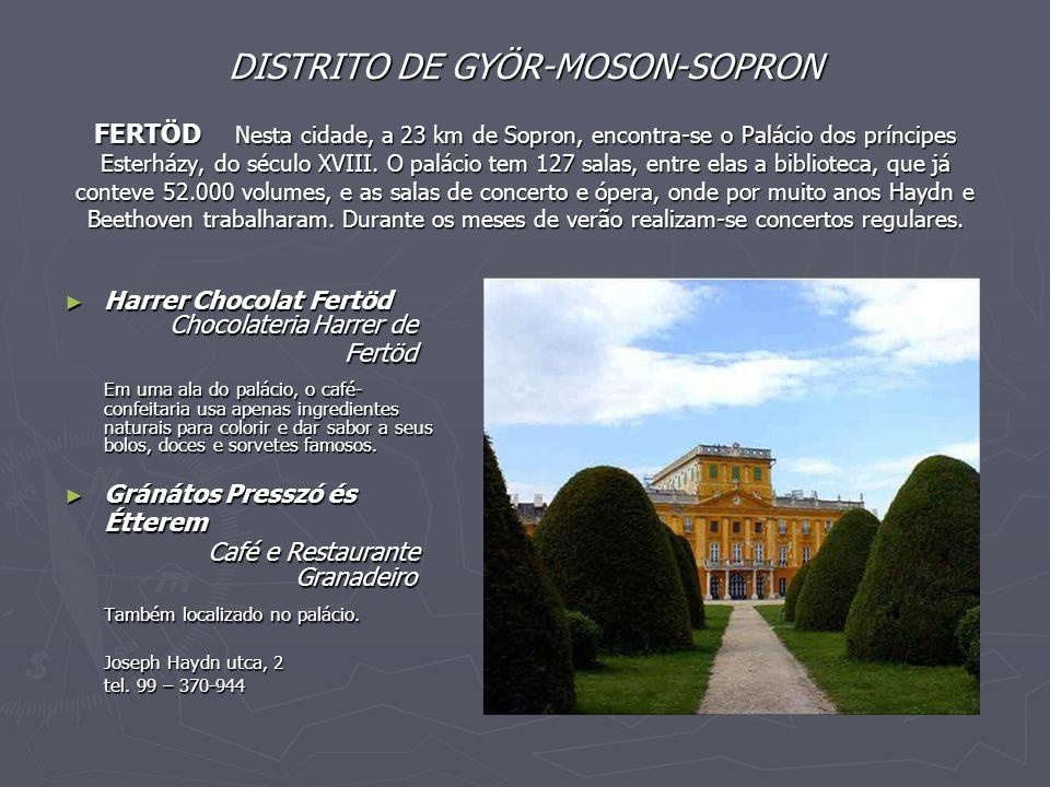 DISTRITO DE GYÖR-MOSON-SOPRON FERTÖD Nesta cidade, a 23 km de Sopron, encontra-se o Palácio dos príncipes Esterházy, do século XVIII. O palácio tem 12