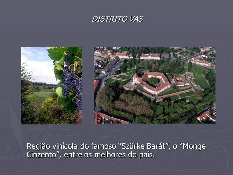 DISTRITO VAS Região vinícola do famoso Szürke Barát , o Monge Cinzento , entre os melhores do país.