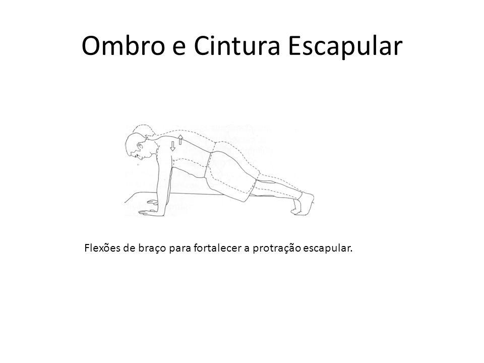 Ombro e Cintura Escapular Flexões de braço para fortalecer a protração escapular.