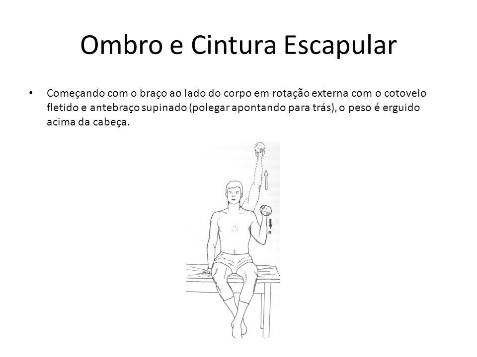 Ombro e Cintura Escapular • Começando com o braço ao lado do corpo em rotação externa com o cotovelo fletido e antebraço supinado (polegar apontando p