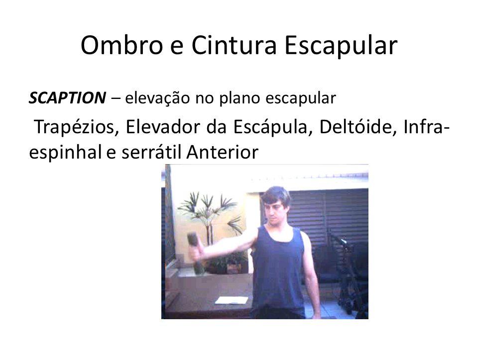 Ombro e Cintura Escapular SCAPTION – elevação no plano escapular Trapézios, Elevador da Escápula, Deltóide, Infra- espinhal e serrátil Anterior