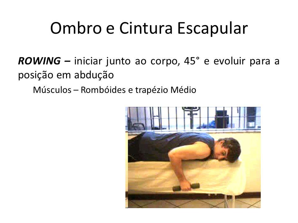 Ombro e Cintura Escapular ROWING – iniciar junto ao corpo, 45° e evoluir para a posição em abdução Músculos – Rombóides e trapézio Médio