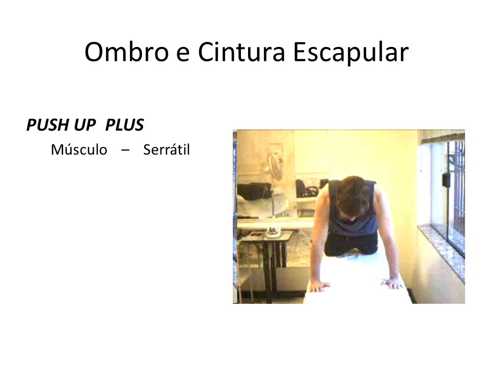Ombro e Cintura Escapular PUSH UP PLUS Músculo – Serrátil Anterior