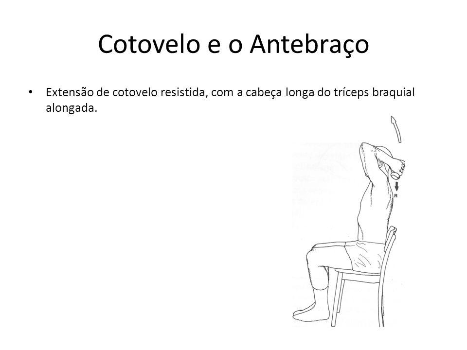 Cotovelo e o Antebraço • Extensão de cotovelo resistida, com a cabeça longa do tríceps braquial alongada.