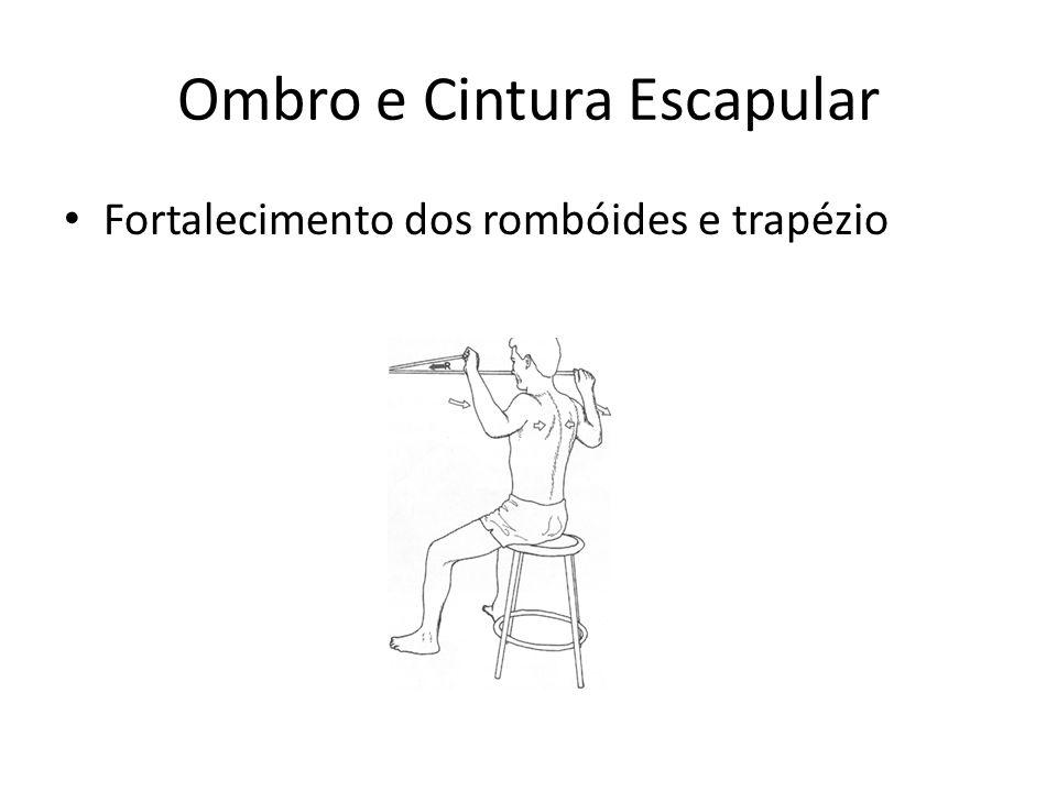 Ombro e Cintura Escapular • Fortalecimento dos rombóides e trapézio
