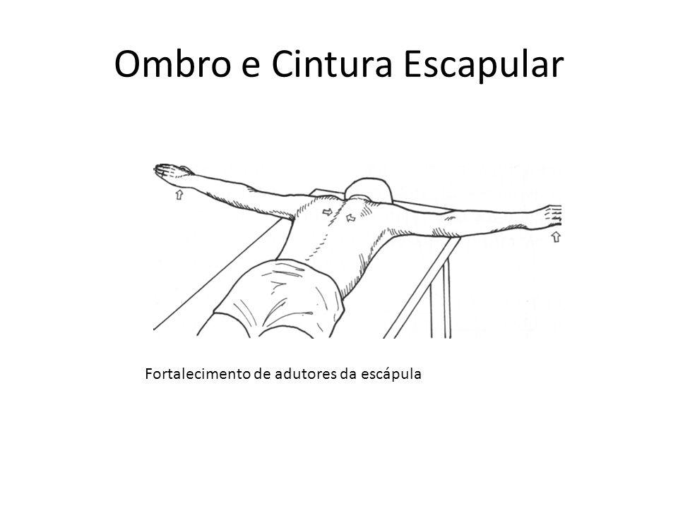 Ombro e Cintura Escapular Fortalecimento de adutores da escápula