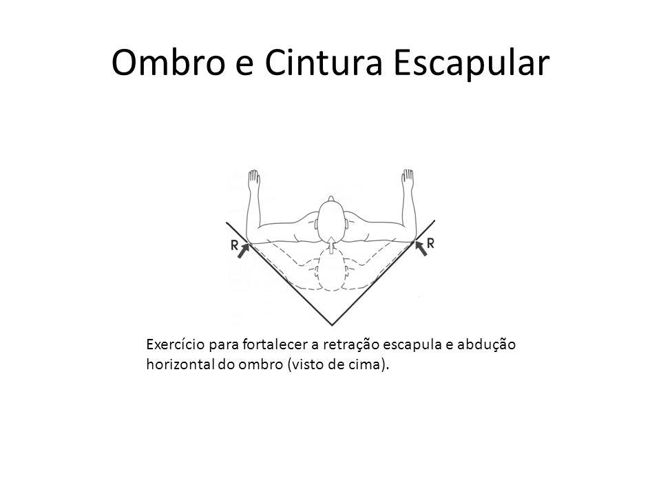 Ombro e Cintura Escapular Exercício para fortalecer a retração escapula e abdução horizontal do ombro (visto de cima).