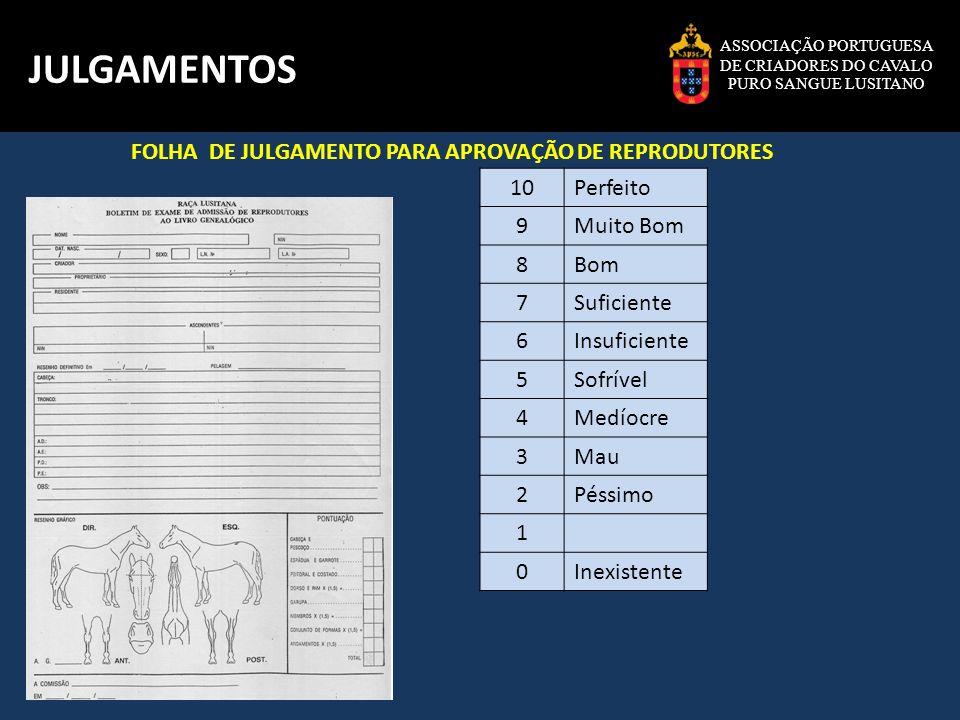 ASSOCIAÇÃO PORTUGUESA DE CRIADORES DO CAVALO PURO SANGUE LUSITANO JULGAMENTOS FOLHA DE JULGAMENTO PARA APROVAÇÃO DE REPRODUTORES 10Perfeito 9Muito Bom
