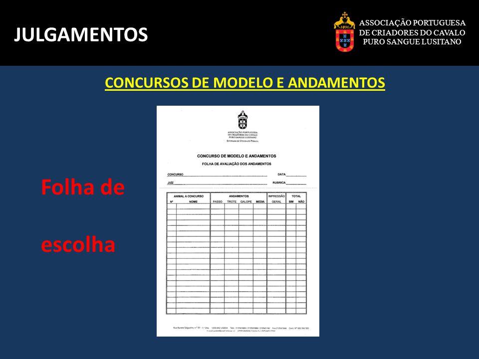 ASSOCIAÇÃO PORTUGUESA DE CRIADORES DO CAVALO PURO SANGUE LUSITANO JULGAMENTOS Folha de pontuação Classes à mão Classes montadas