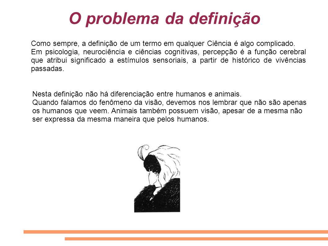 O problema da definição Como sempre, a definição de um termo em qualquer Ciência é algo complicado. Em psicologia, neurociência e ciências cognitivas,